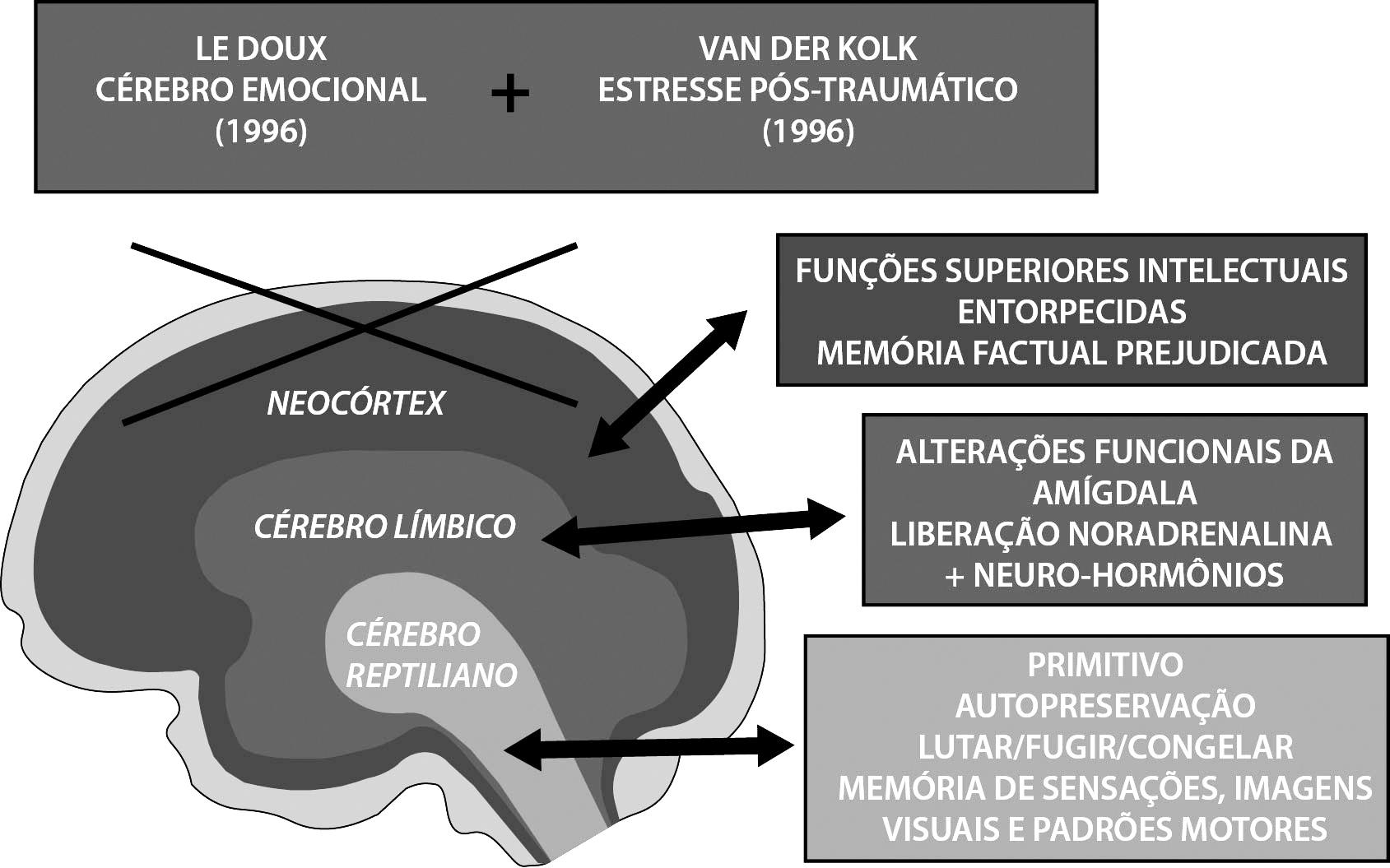 f801dea8e983 Figura 2 – Funcionamento Cerebral e Memória no Estresse Pós-Traumático